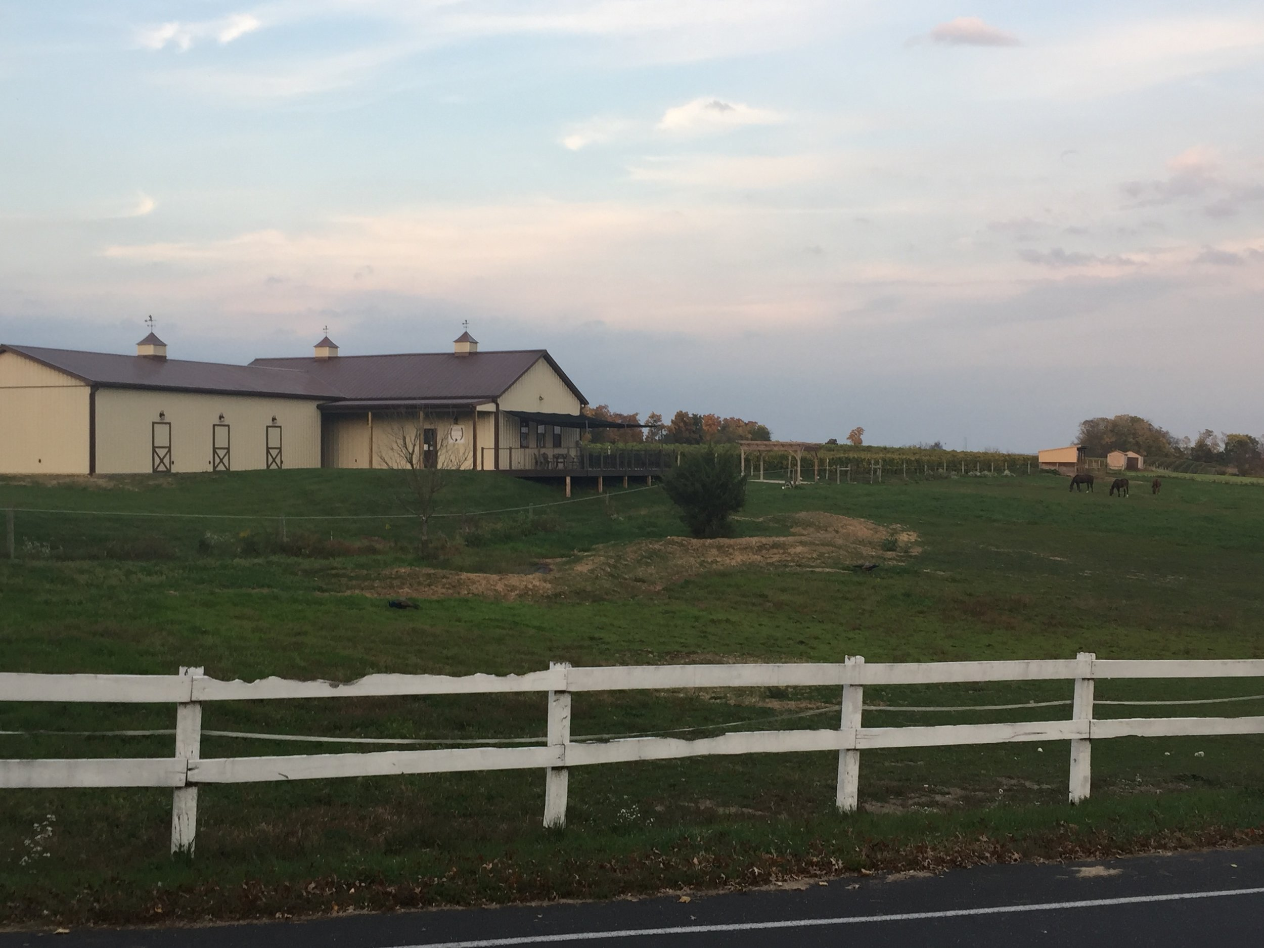 Fall view of the vineyard and winery.