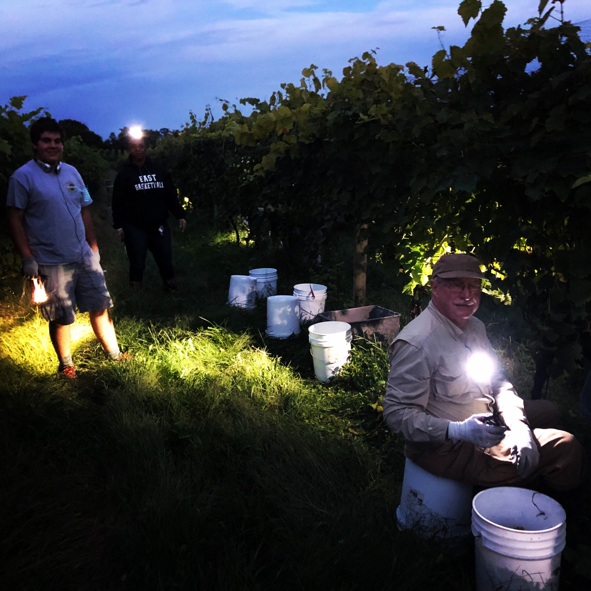 Night picking party 2018!