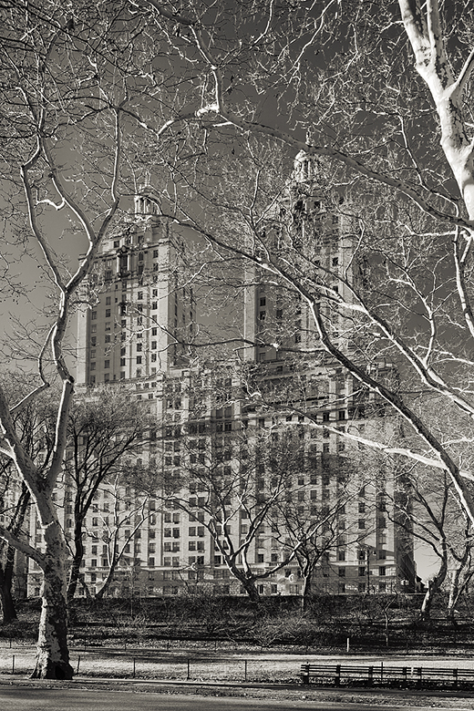 NYC - Central Park Architecture