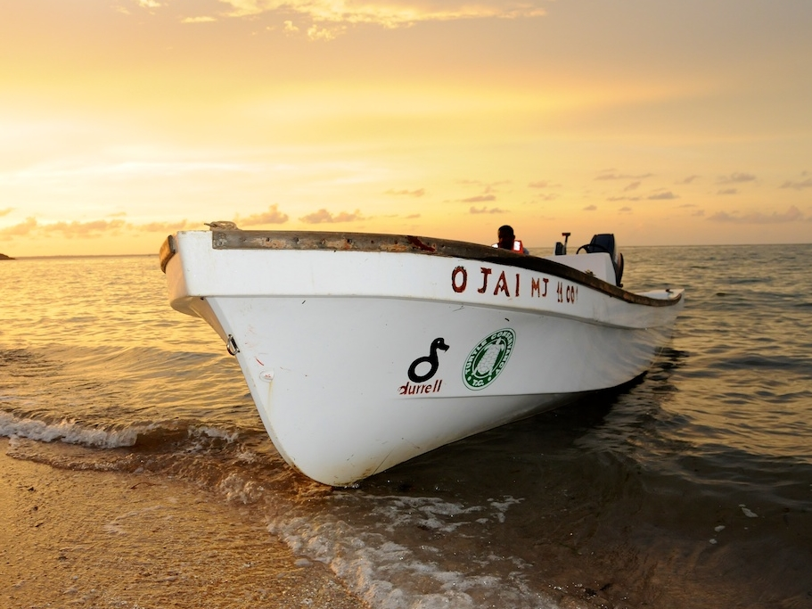 Support for on-the-ground rangers and biologists, including a boat for quicker response time.