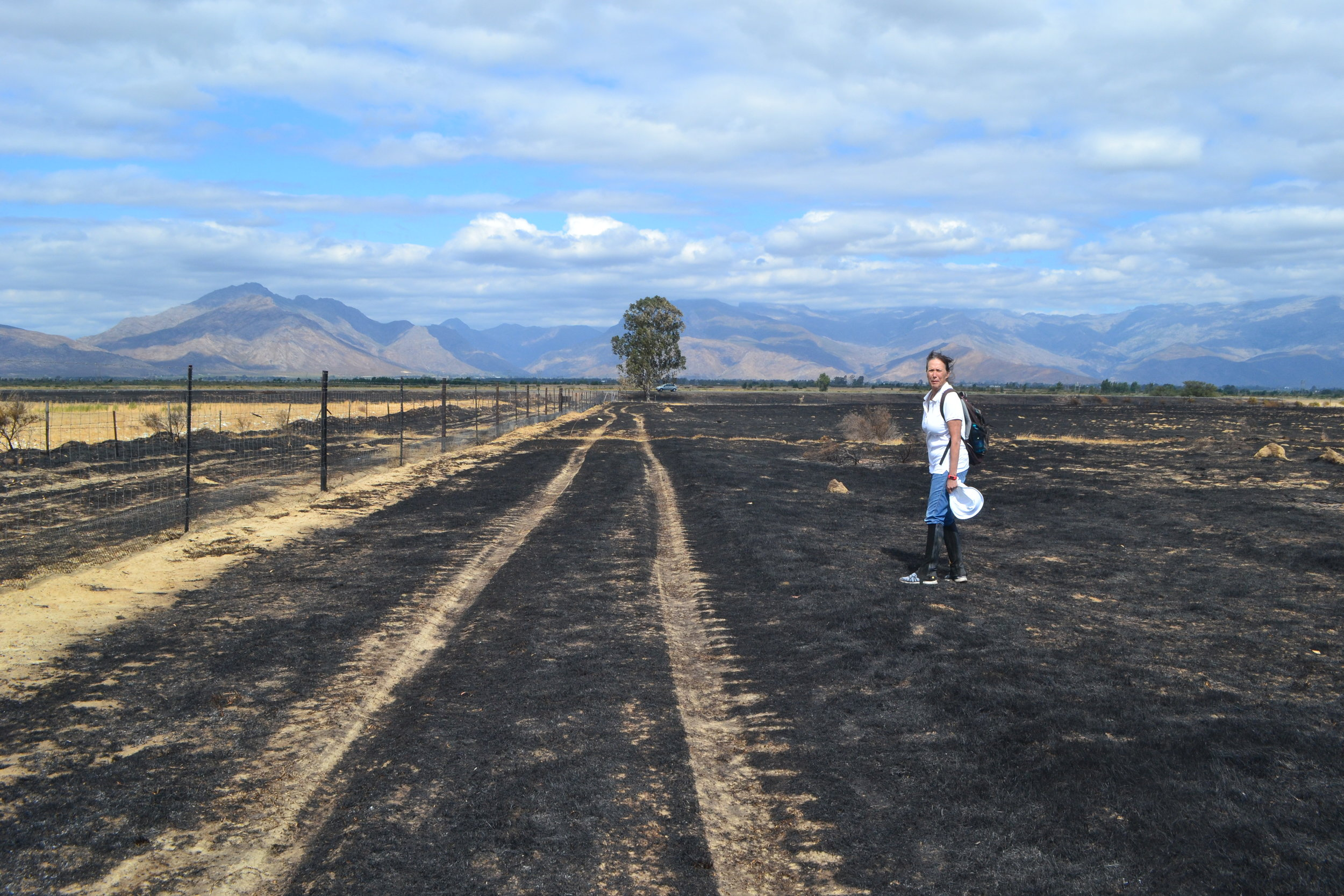 Prof. Hofmeyr on the burned area of the reserve April 7