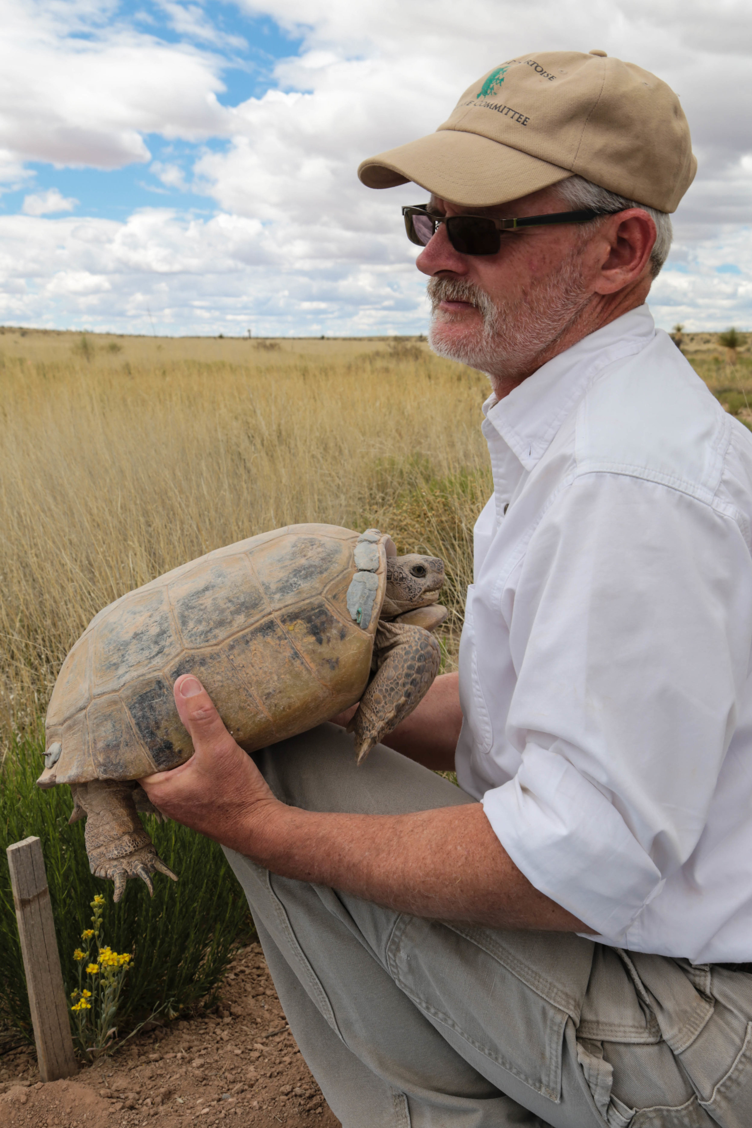 Scott Hillard with a Bolson Tortoise