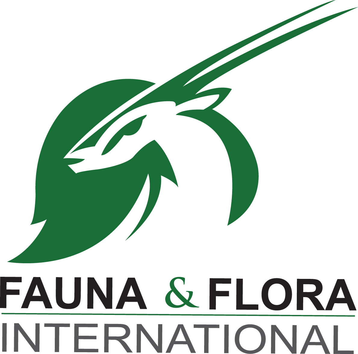 Fauna and Flora International
