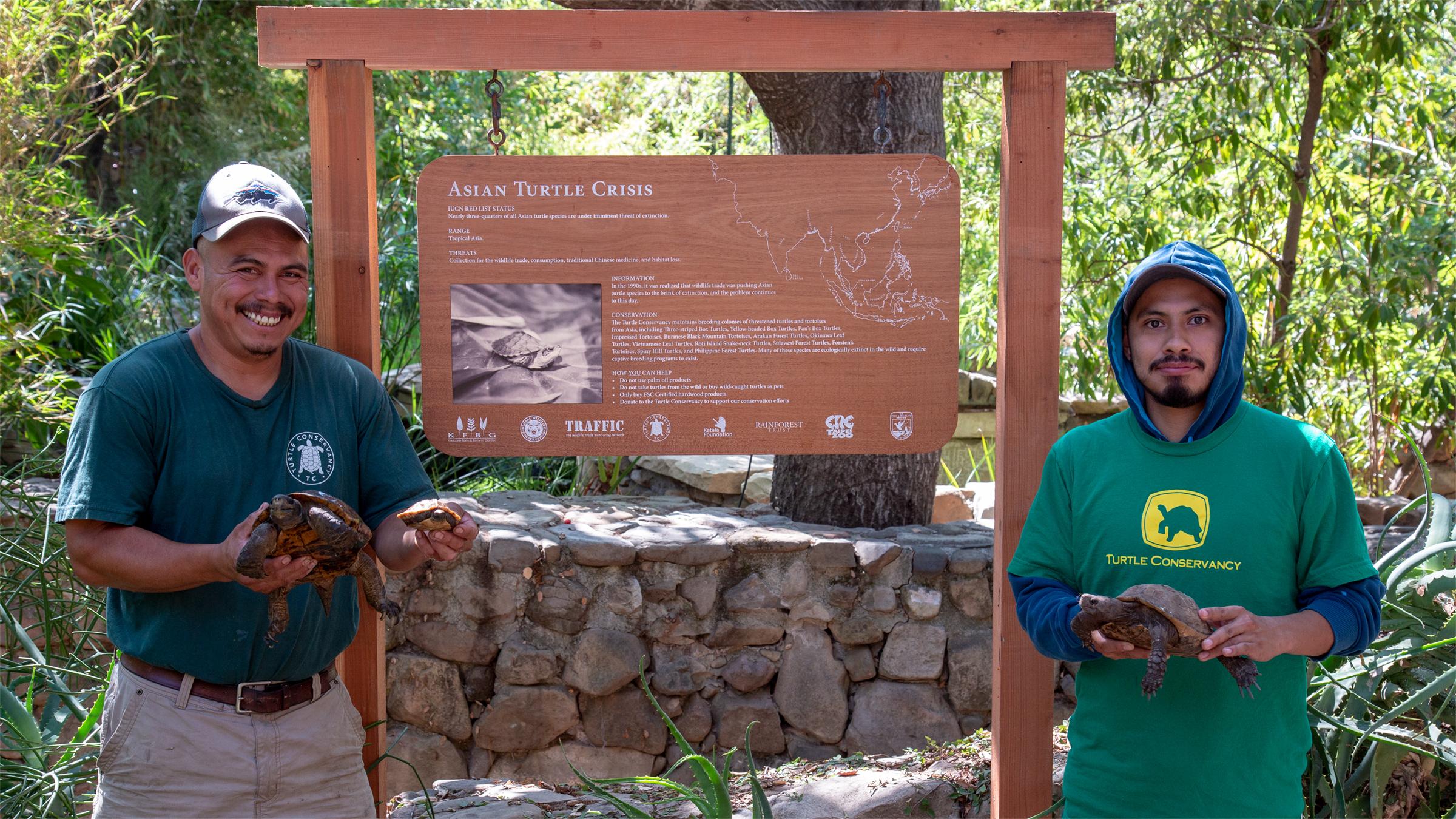 Turtle Conservancy's Armando Jimenez and Jairo Pastor with Arakan Forest Turtles