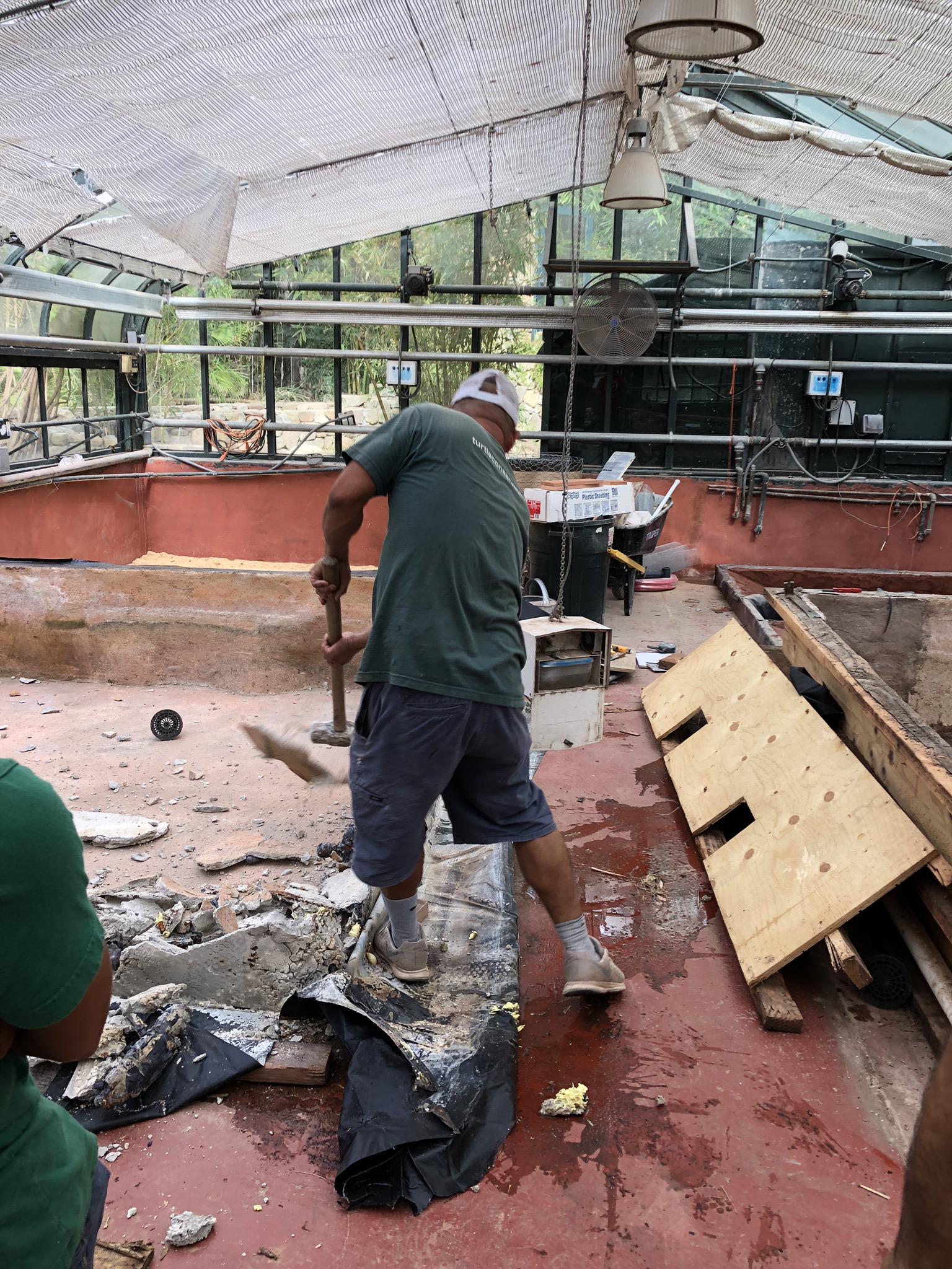 Demolition by Armando!