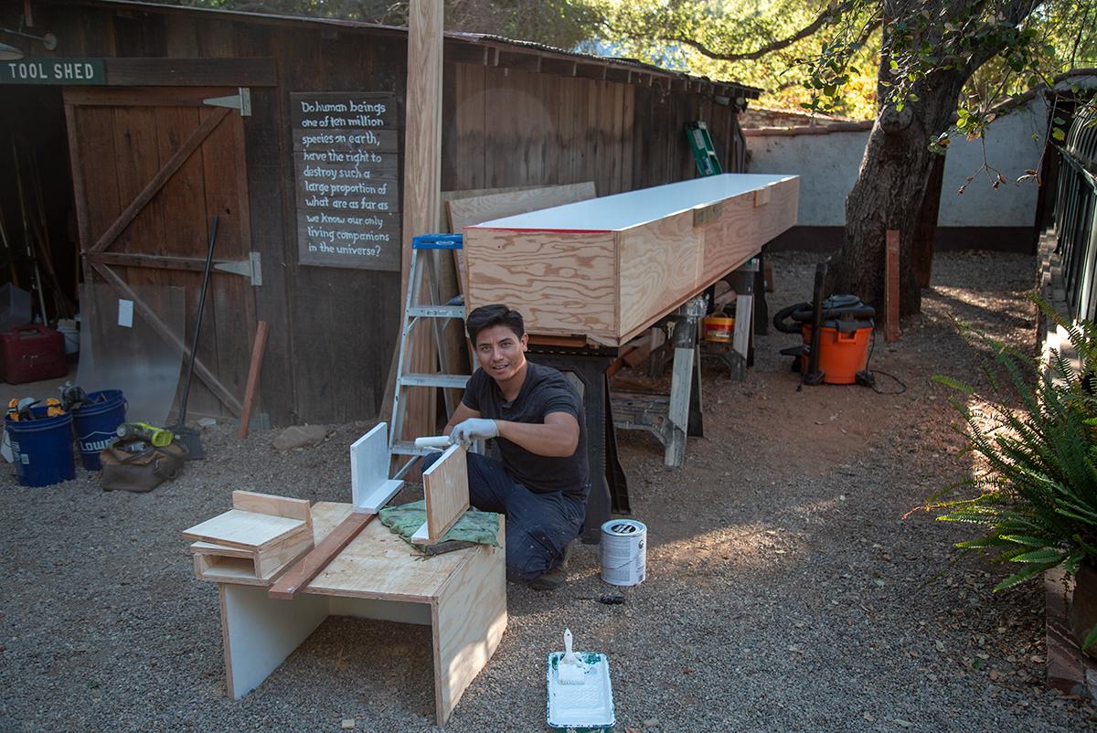 Oscar creating tables for Okinawa Leaf Turtles