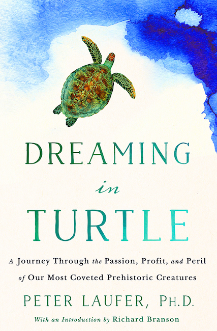 Dreaming in Turtle cover small.jpg