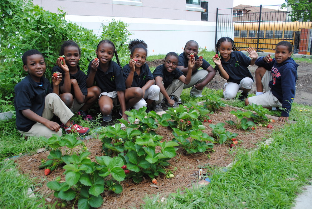 Whole Kids school gardeners. Photograph courtesy of Whole Kids Foundation.