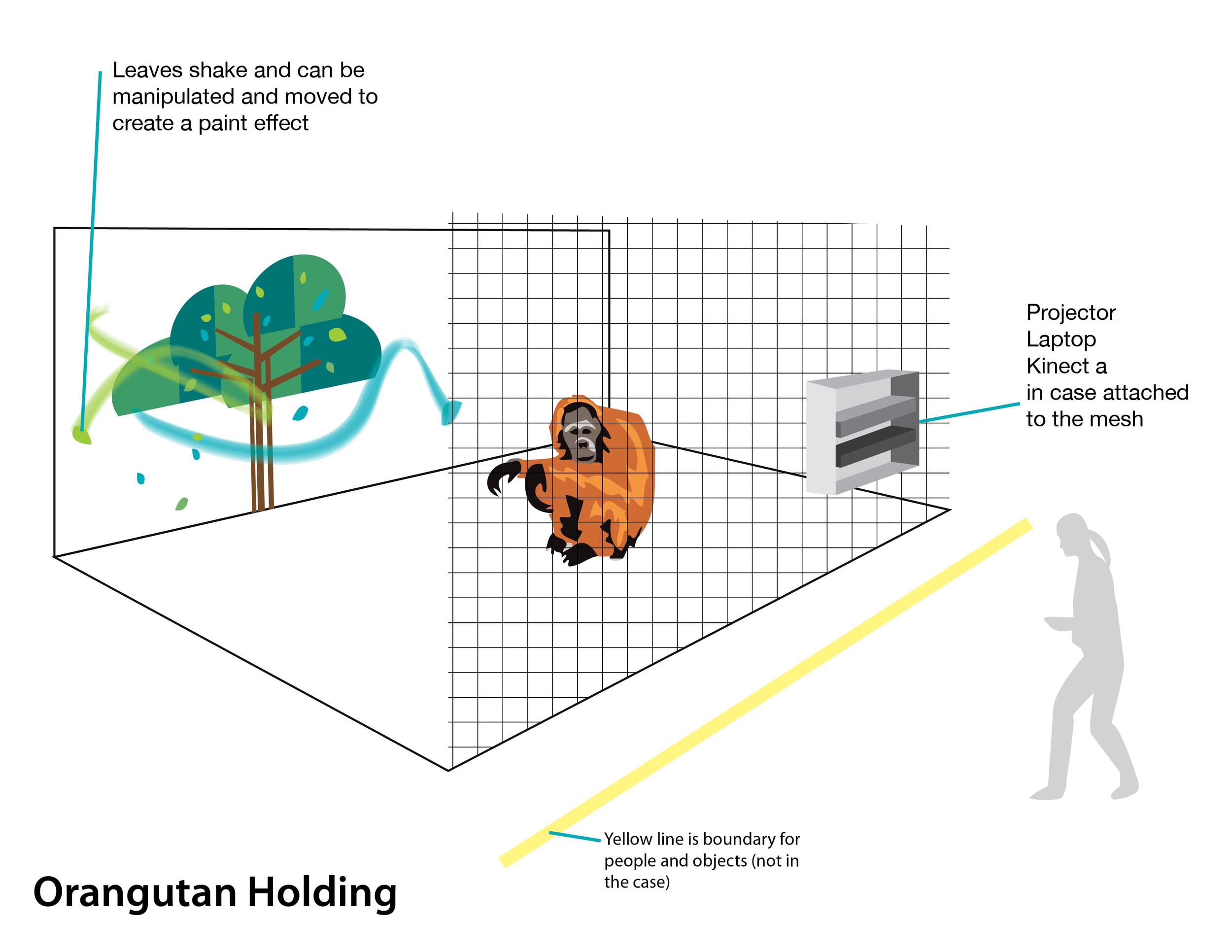 orangutan-kinect-setup-01.png