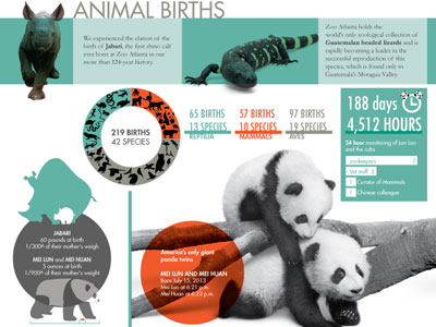 feature-2013-annual-report-infographic.jpg