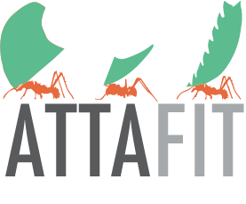 Atta is the scientific name for leafcutter ants