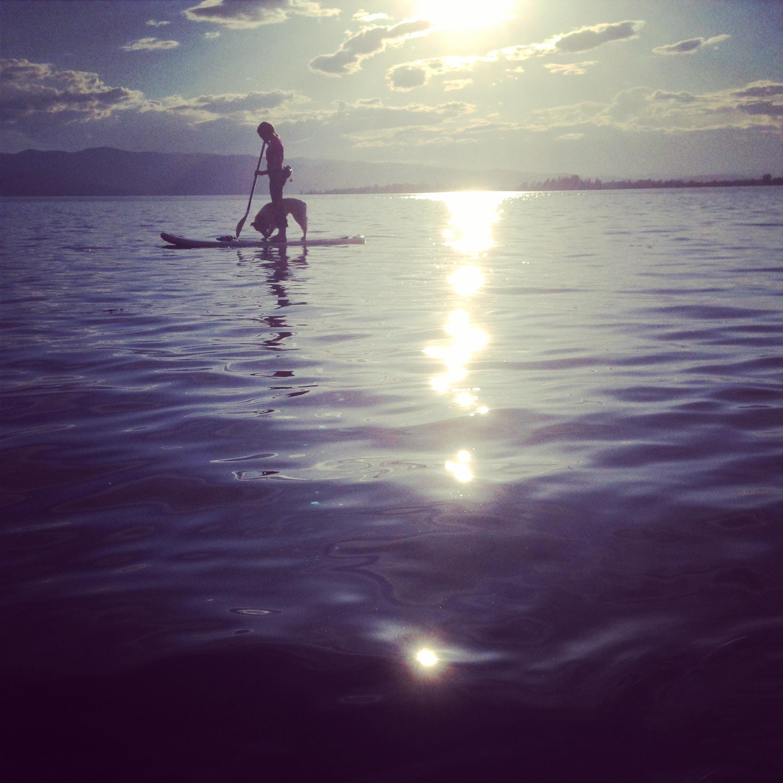 Dr. VanDelinder and Tesla (dog) paddle boarding Flathead Lake