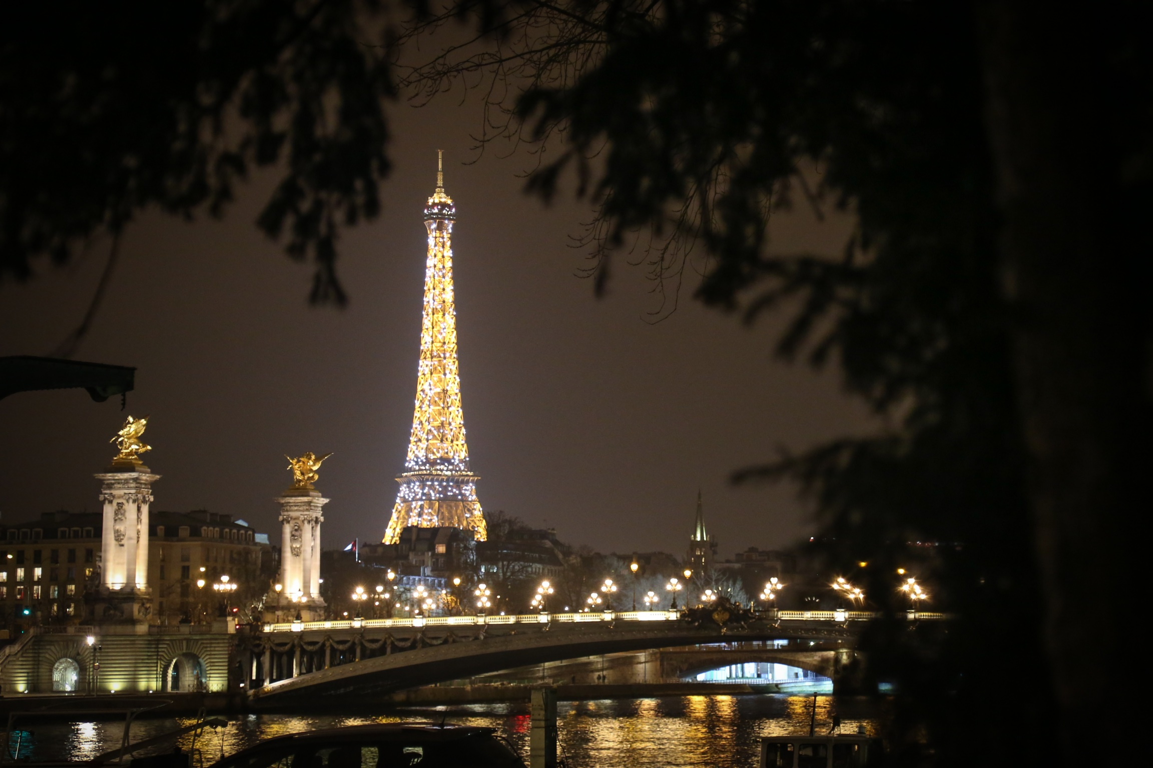 The Eiffel Tower while it sparkles on the hour