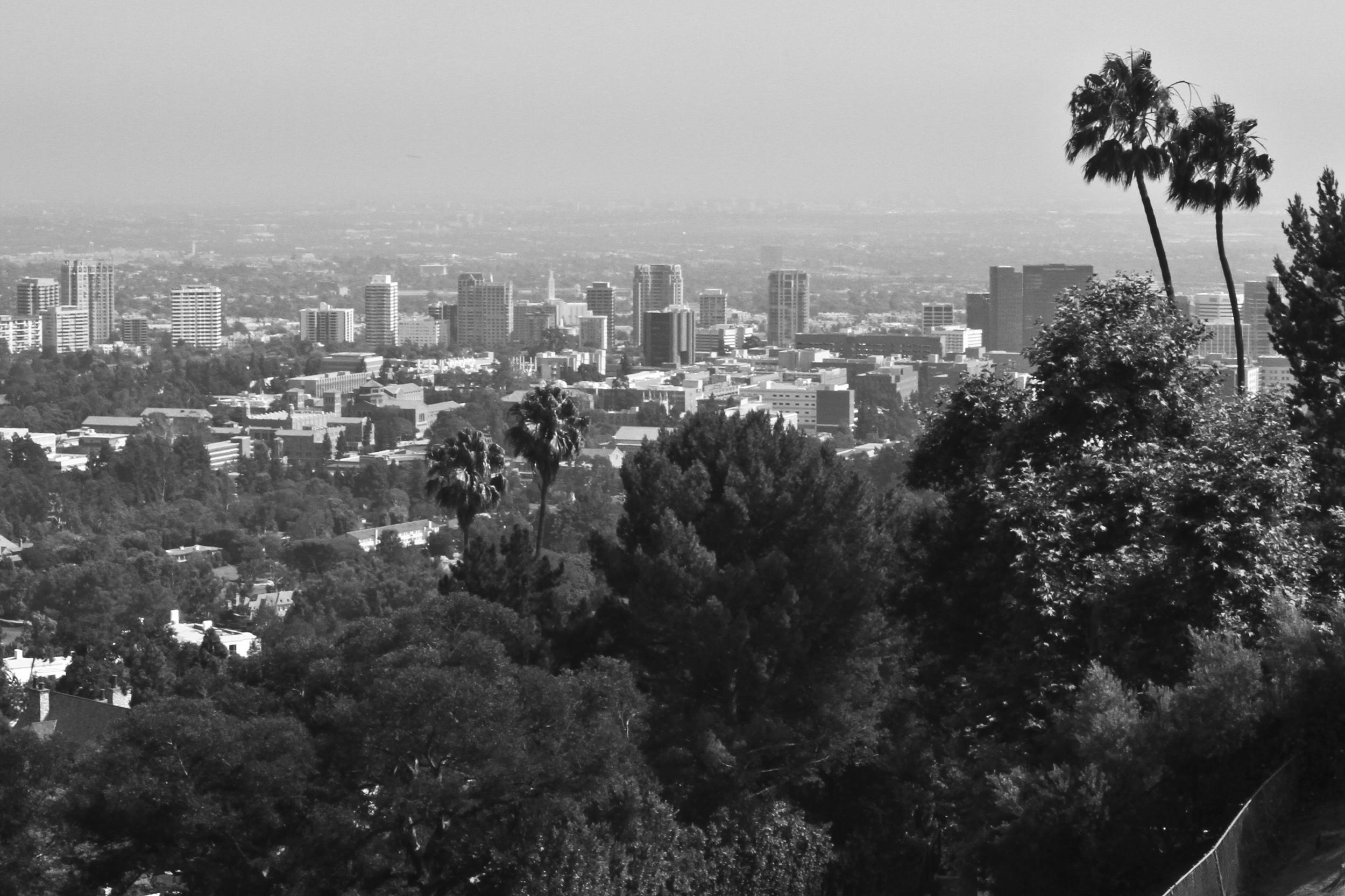 LA-travis32.jpg