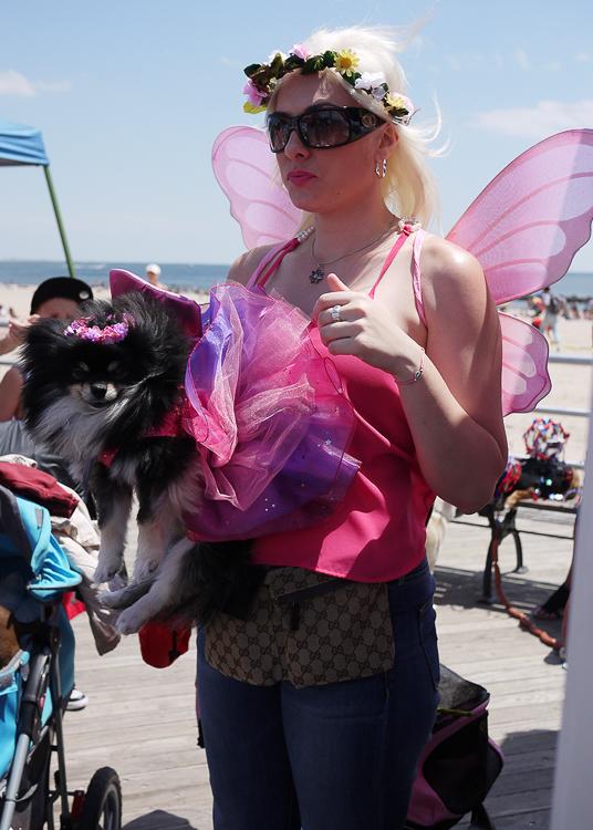 20140620113910-pomeranian_black_fairy_costume.jpg