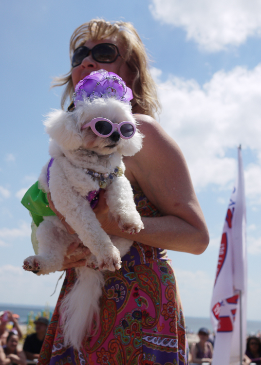 20140620113943-white_lilac_glasses_amy_dog_onstage_2.jpg