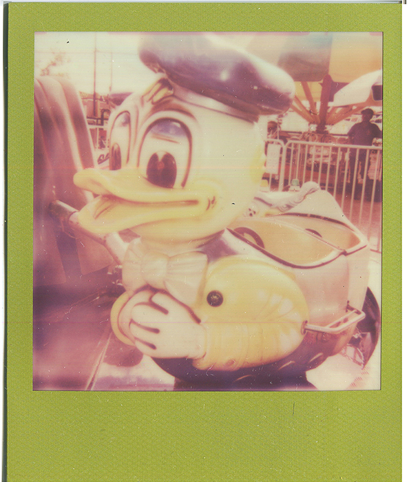 20140620115549-impossible_polaroids_wild_river___duck-2.jpg