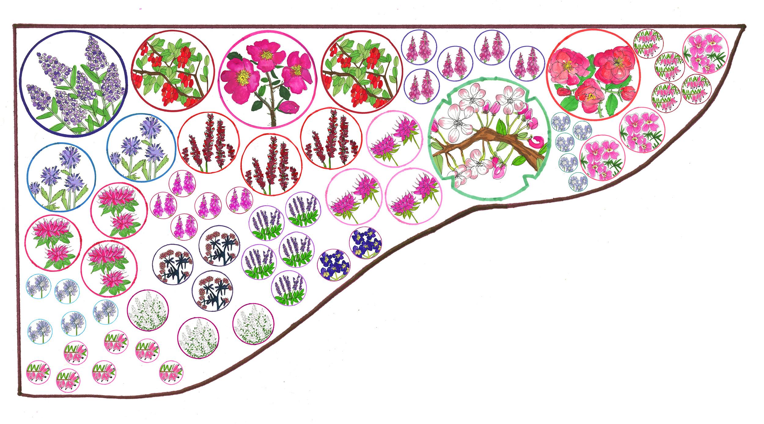 10. Wildlife garden - OH plan FIN.jpg