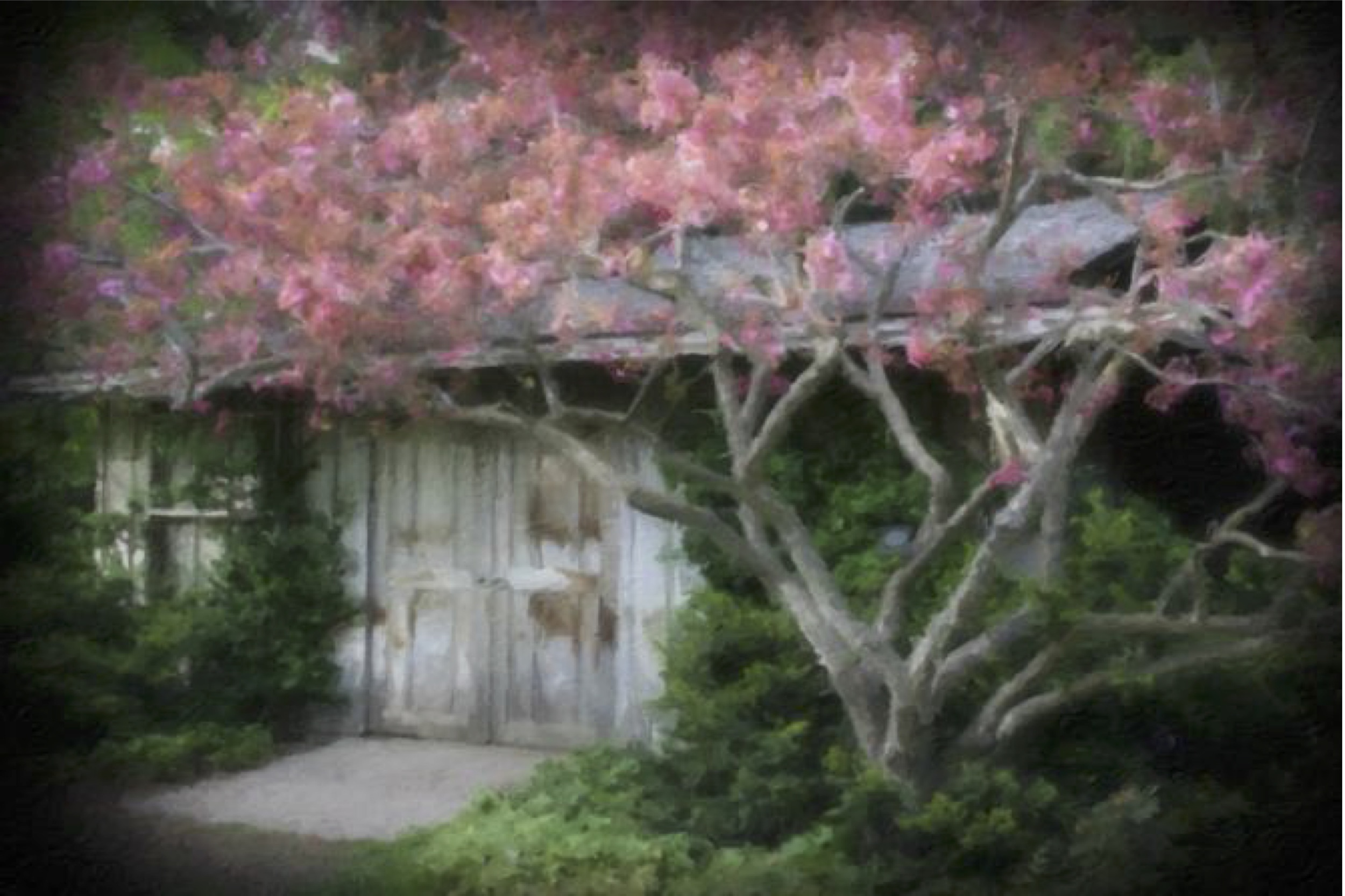 The Tree House - 9x12 - 470.jpeg