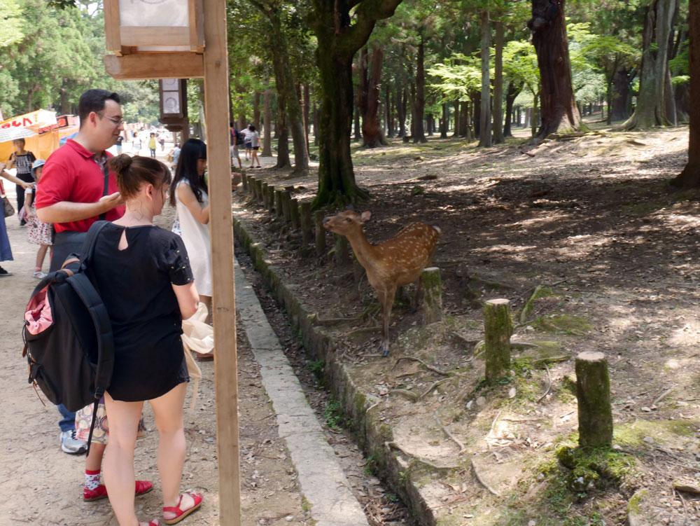 me-and-the-deer.jpg