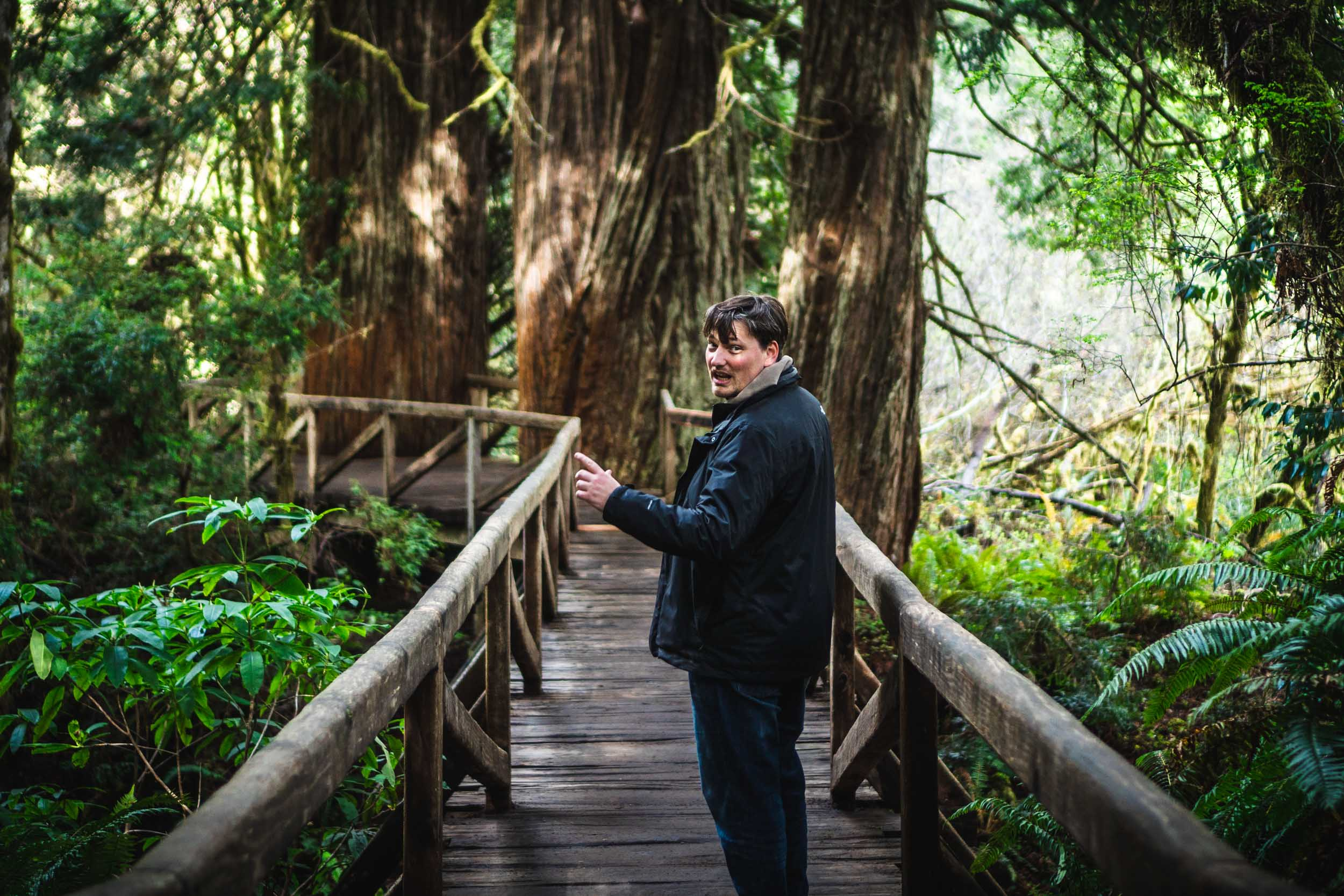 My Dutch friend, Leon The Adventurer, in the Redwoods