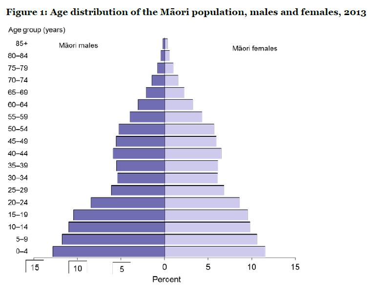 Source: Tatau Kahukura: Māori Health Chart Book 2015, 3rd edition (Ministry of Health, October 2015), p7