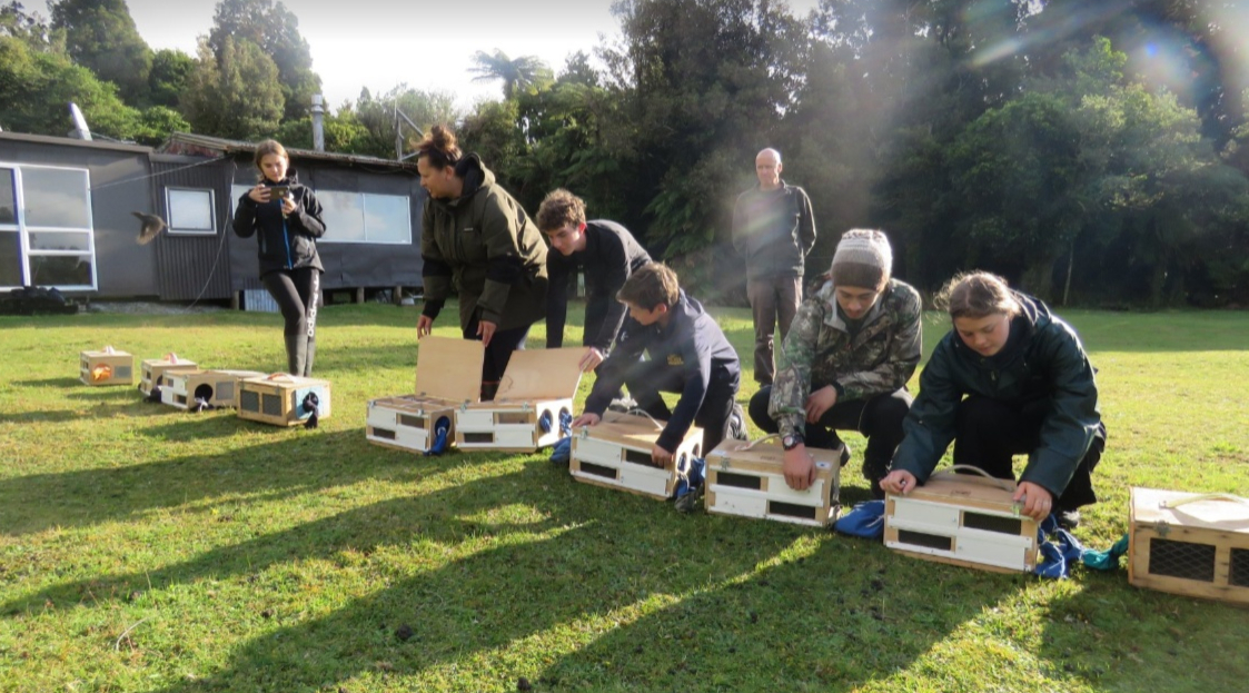 T AW 2019 Rangatahi releasing Robins as part of the Hollyford Conservation trust program.