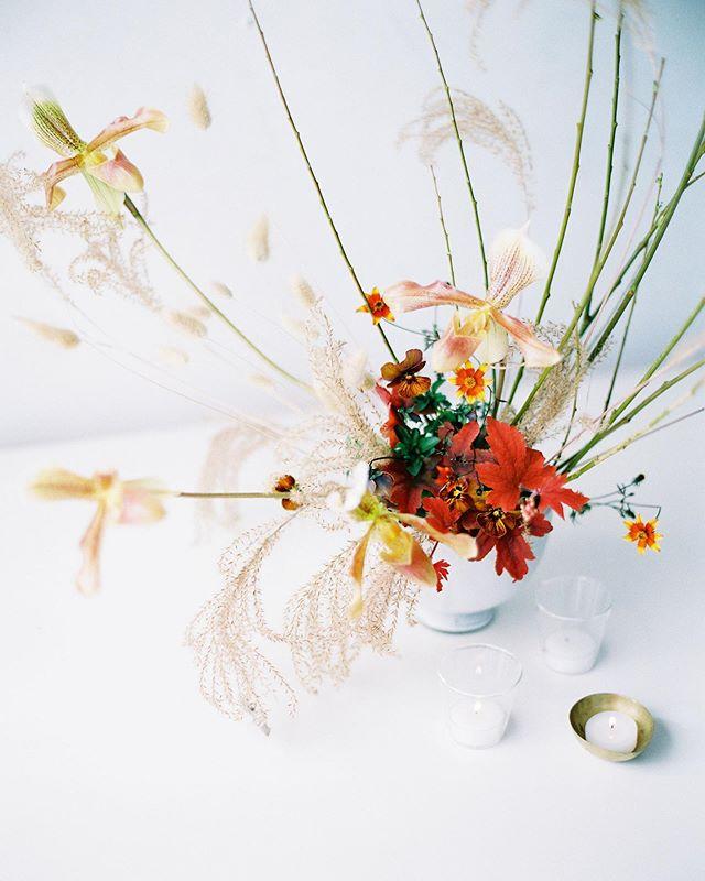 Florals by @amandavidmardesign