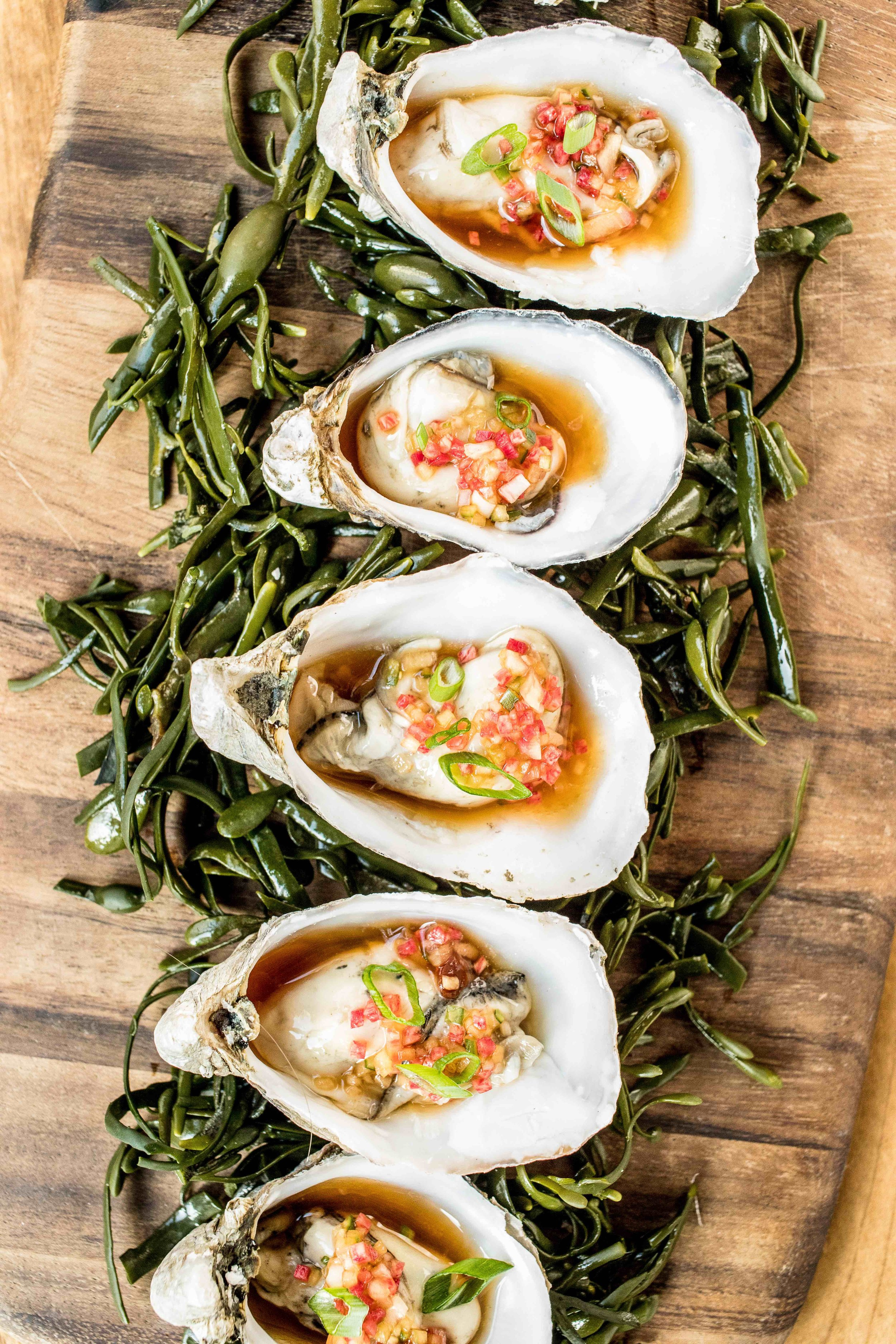 catering_raw_oysters-4.jpg