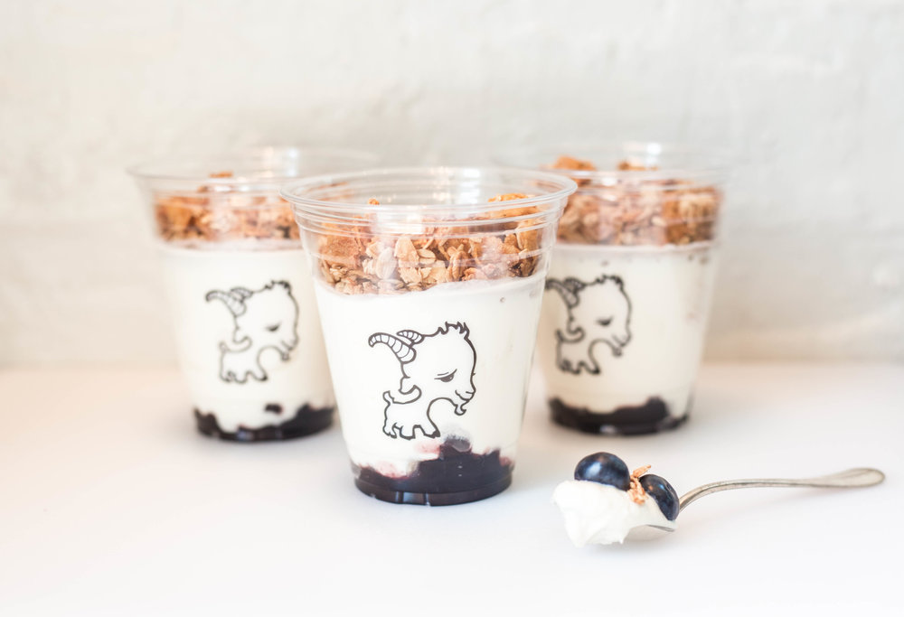 16oz Yogurt Parfaits