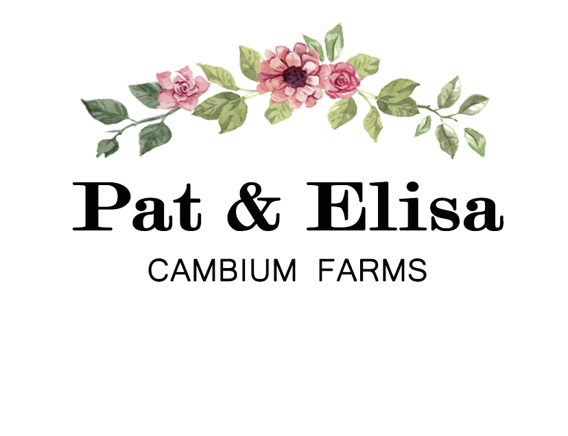 Pat & Elisa - WEB LOGO.jpg