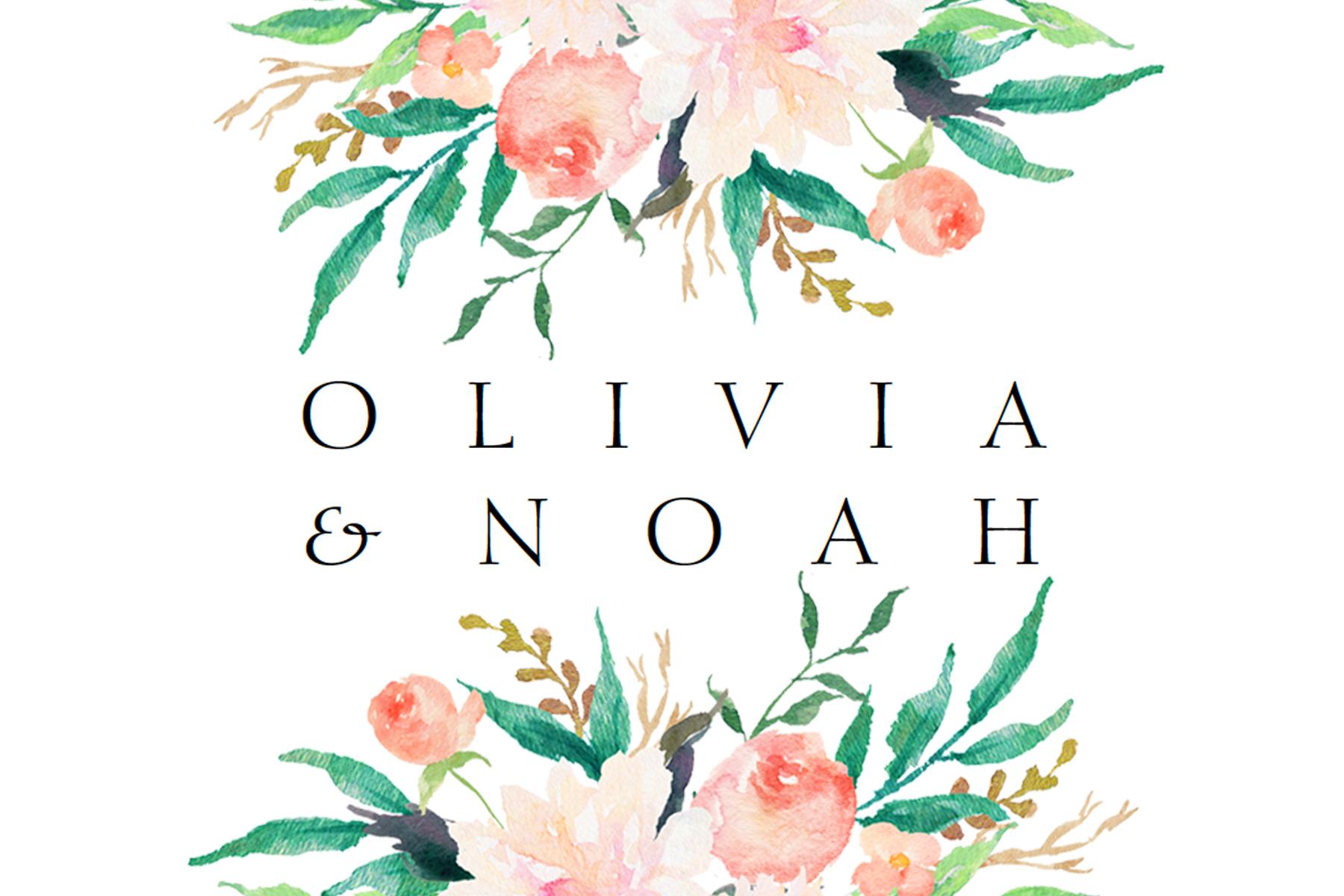 Olivia and Noah_logo.jpg