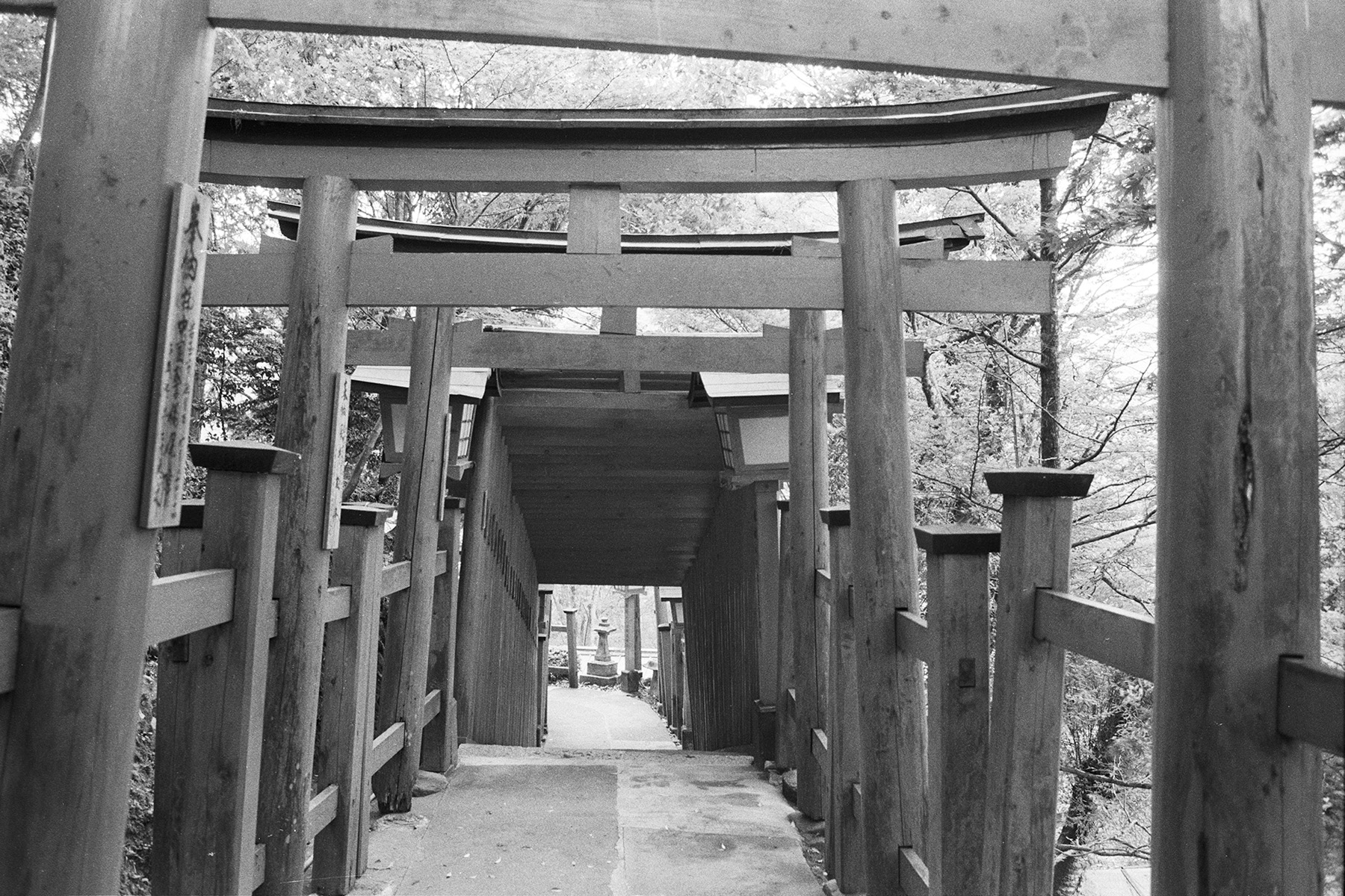 LiehSugai_Travel_Japan_06.jpg