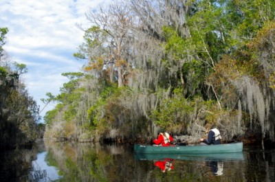 Just setting out on a two day canoe trip in the Okefenokee Swamps
