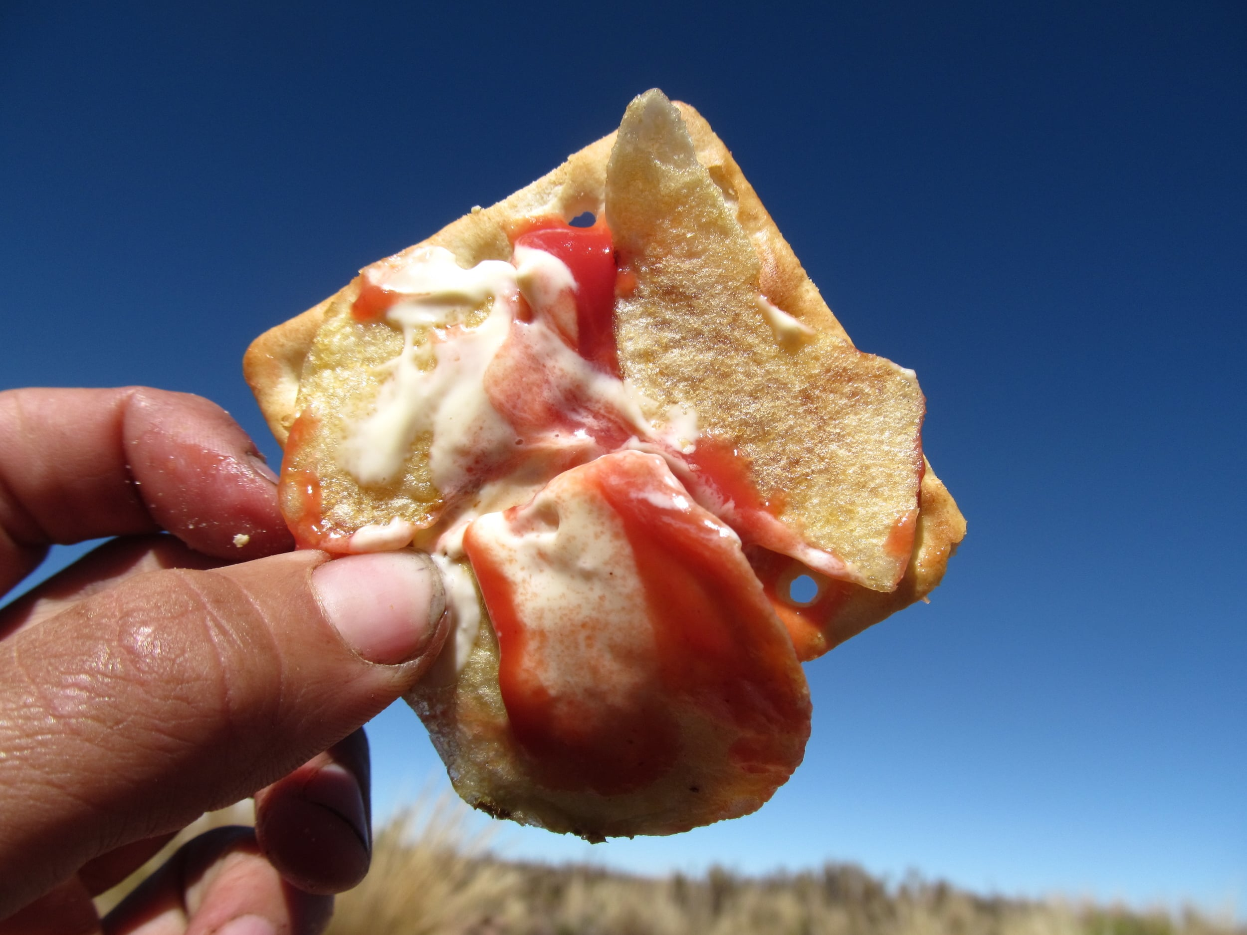The Mega Mix: A chip, mayo, and ketchup topped cracker.