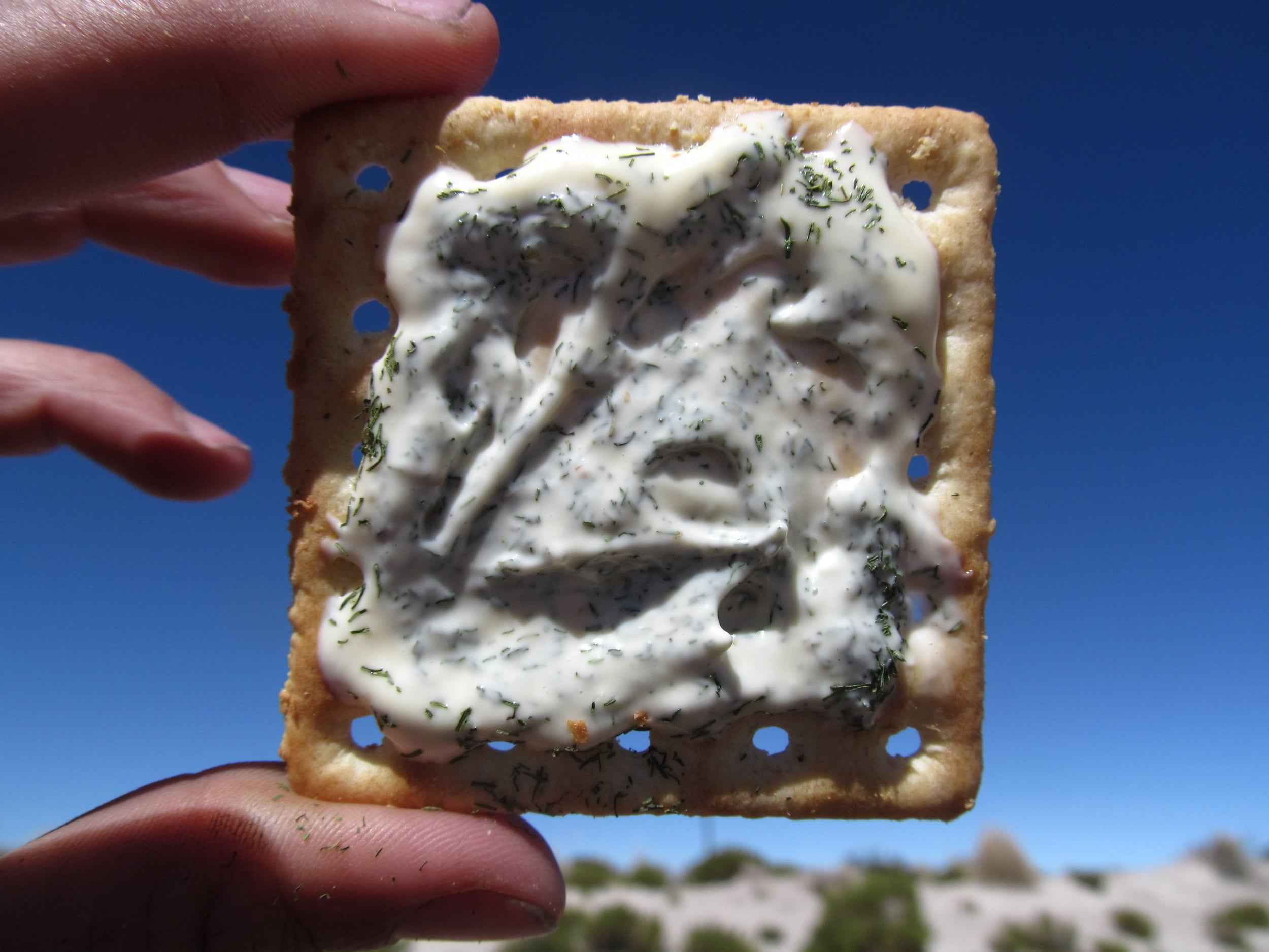 My personal favorite cracker meal: cracker, mayo, and dill.