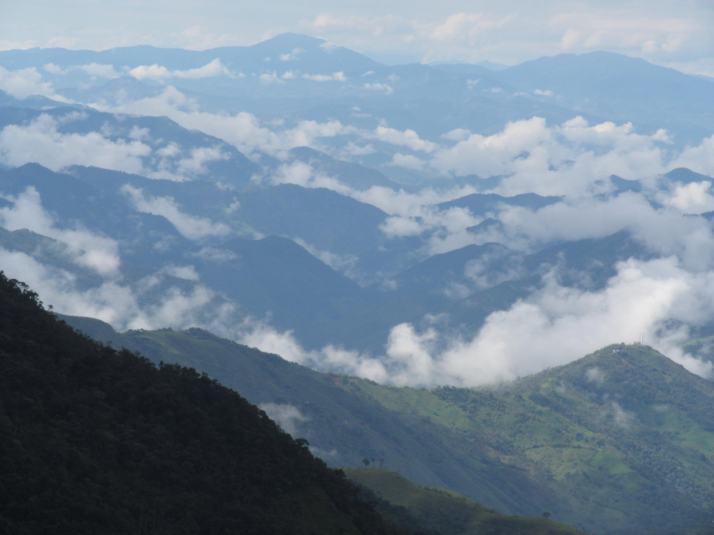 La jungla es muy diferente de los montañas pero todavía son hermosas.