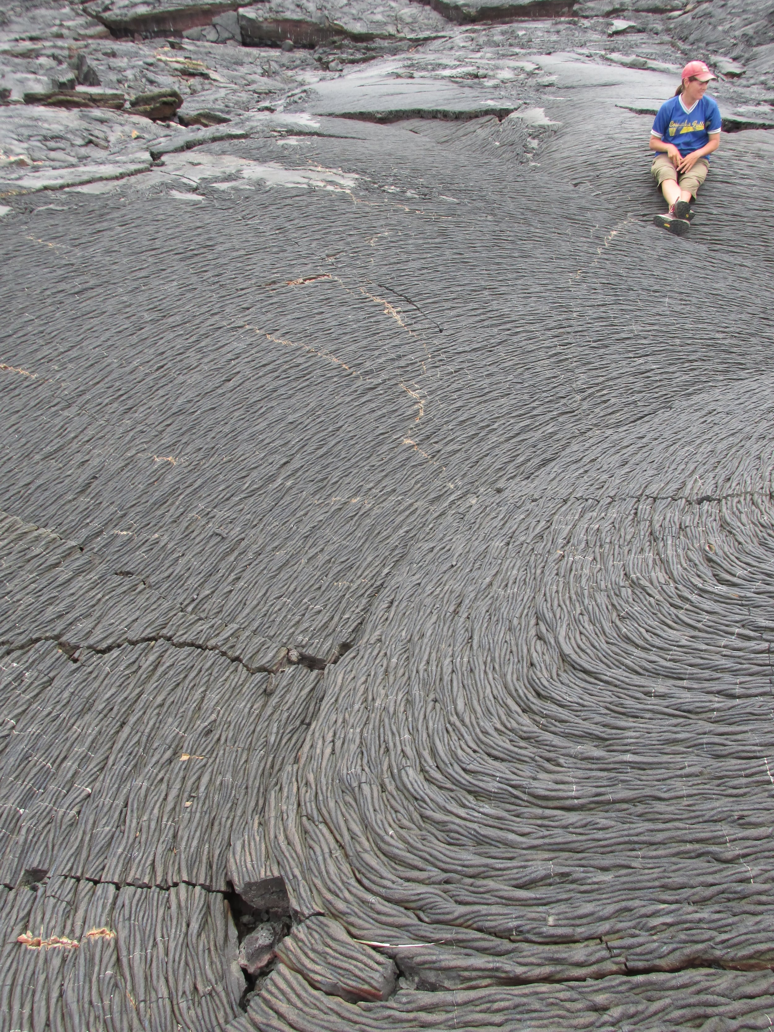 A barren lava field from an eruption some 120 years ago. At one point every island of the Galápagos looked like this.