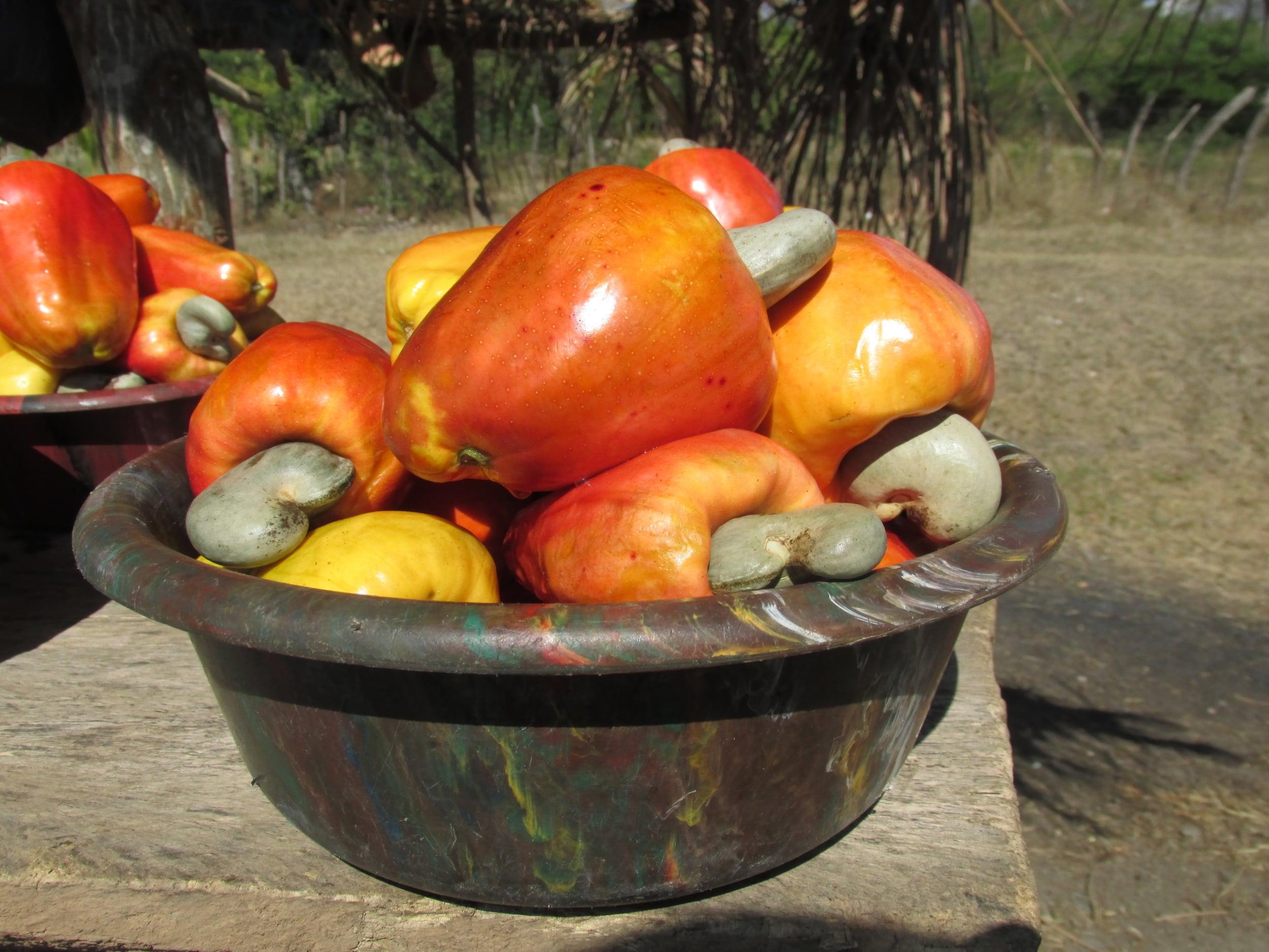 Roadside cashews. The fruits are strange but juicy.