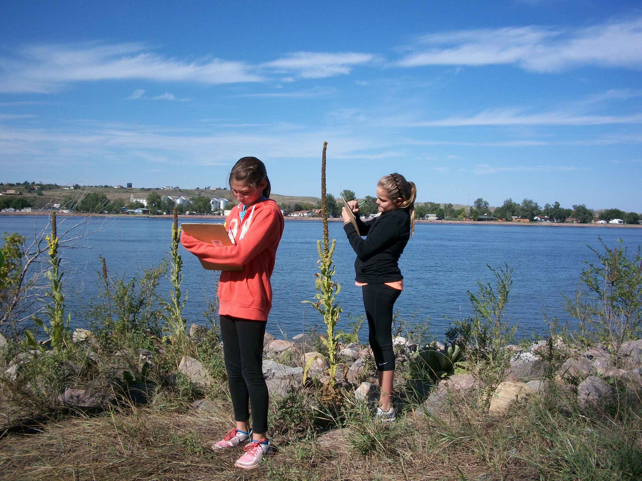 Fifth grade students make observations about organisms found along the river.