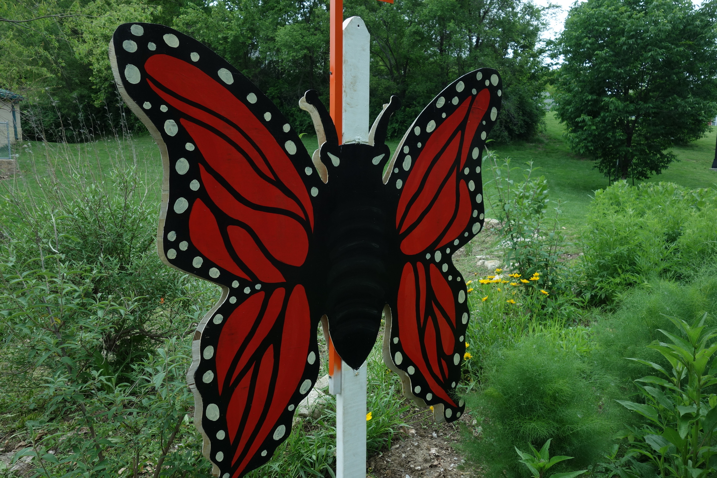 Monarchs love pesticide-free gardens with nectar plants and milkweed plants. I am sure they love educational signs/bling!