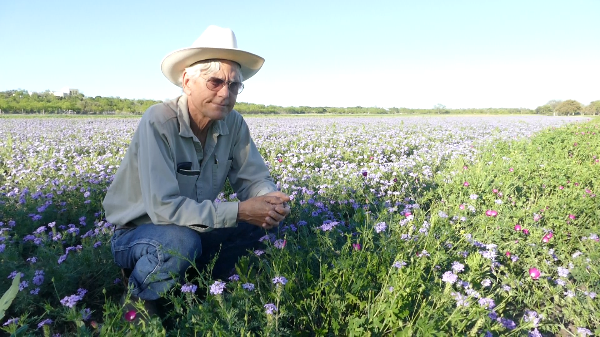 Bill among the native plants he grows as part of Native American Seed Company.
