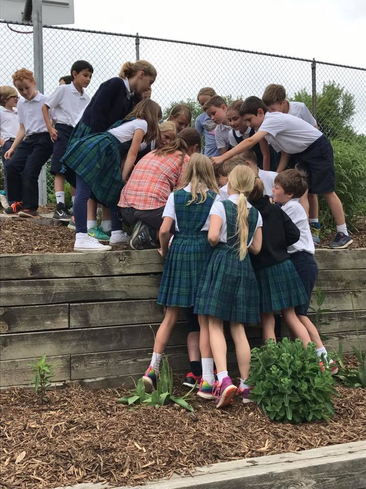What I love most about monarch gardens is that the kids are able to have such authentic experiences with nature, be curious, and see what I still can't believe: that if you plant milkweed, monarchs will come.