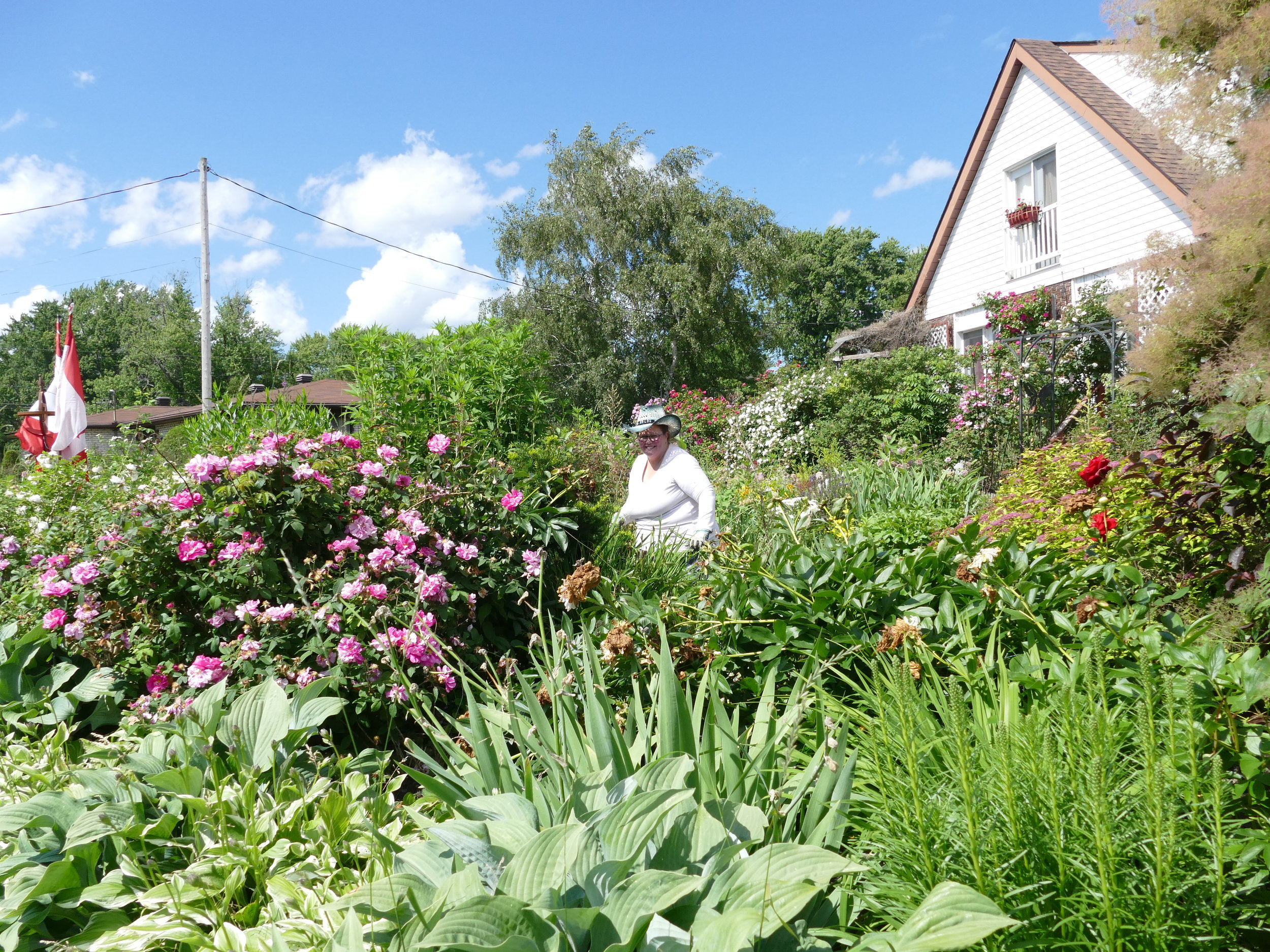 Candy and Peter work in their incredible garden which is like a beautiful welcome mat for guests staying at their bed and breakfast.