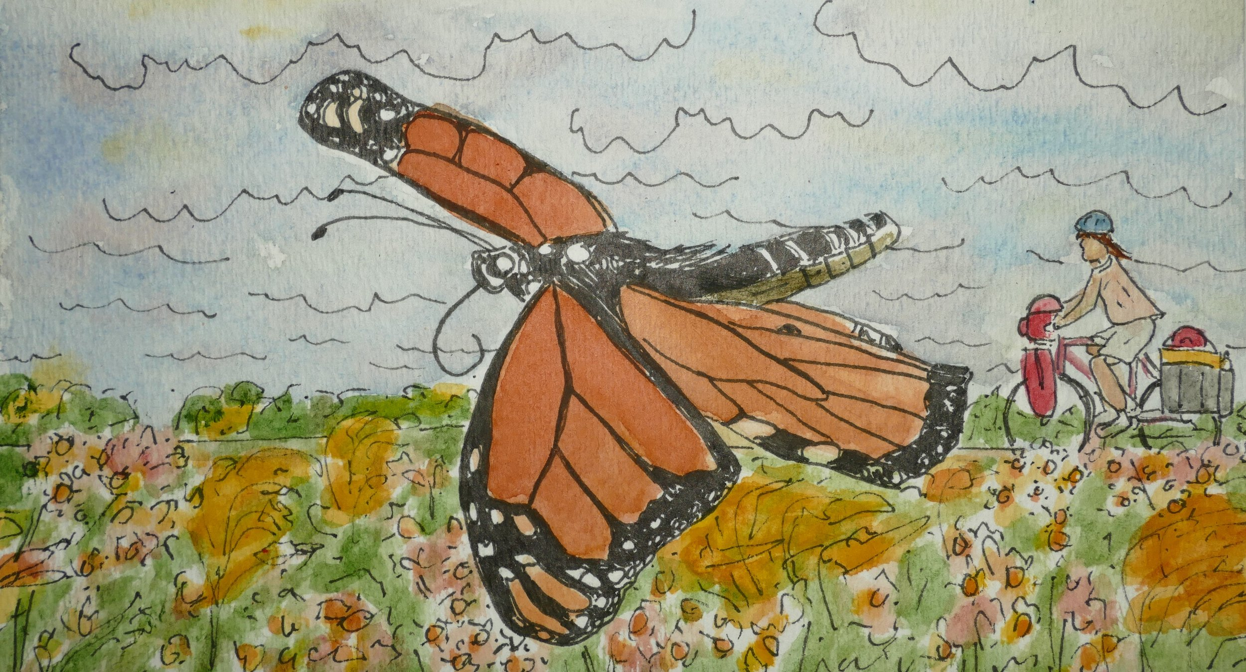 JJ. I wished the monarchs I saw good luck on their adventure south, and I hoped I'd see them again in Mexico.