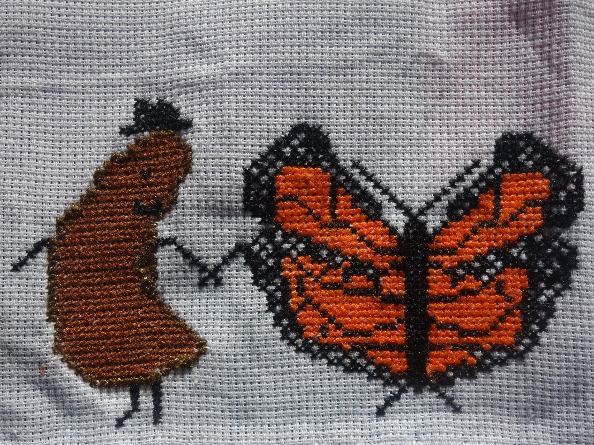 Monarchs dancing with beans!