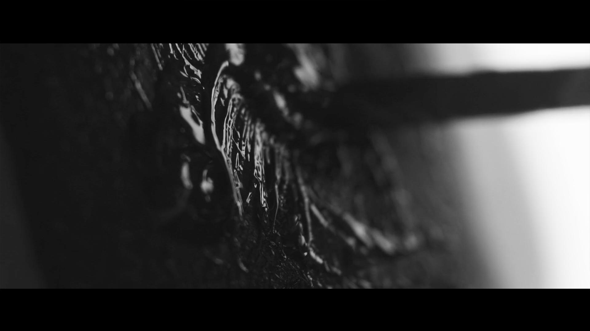 'Fear & Love' - Short