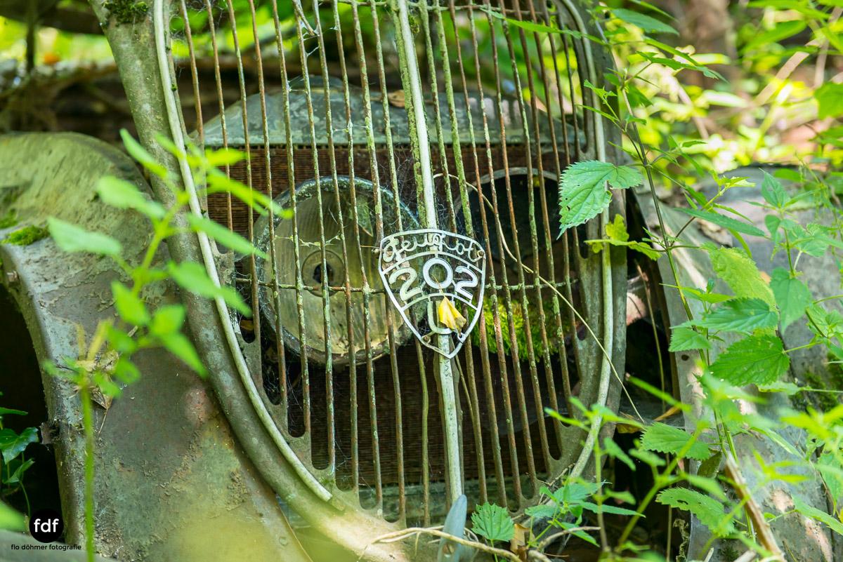 Garage Poussette-Oldtimer-Lost-Place-Frankreich-177.JPG