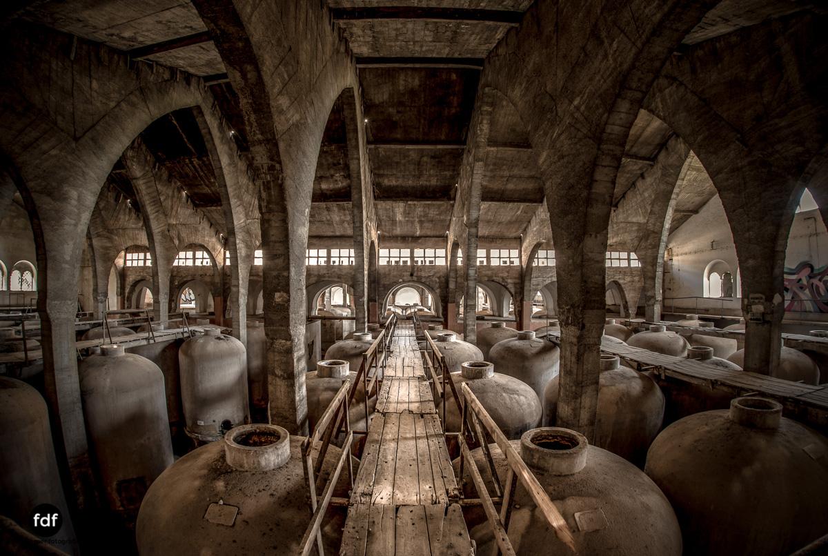 Bodega F Winzer Wein Spanien Lost Place-52.JPG