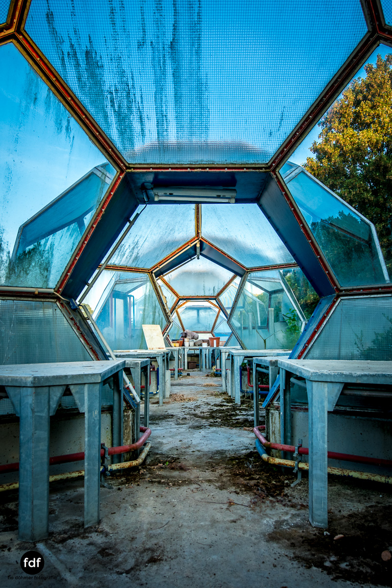 UFO Gärtnerei Kuppeln -88.JPG